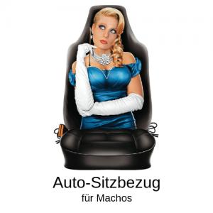 Auto-Sitzbezug