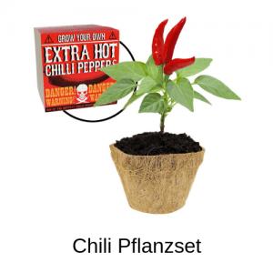 Chili Pflanzset