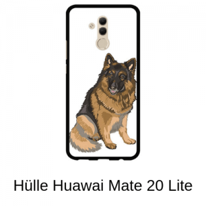 Huwawei 2